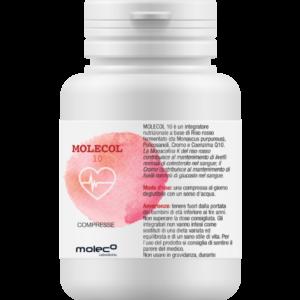 Molecol 10